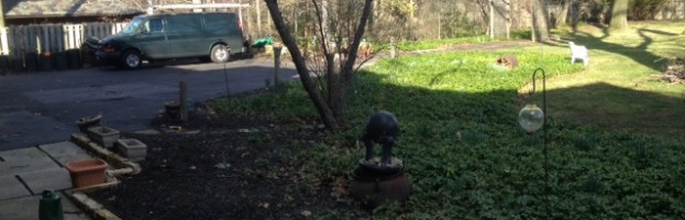 South Russell Secret Small Garden