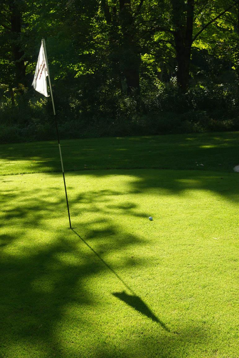 golfgreen10