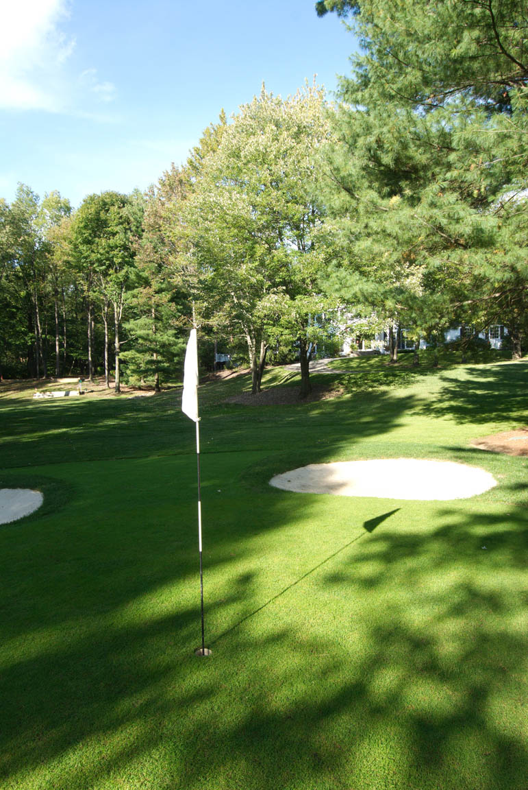 golfgreen3