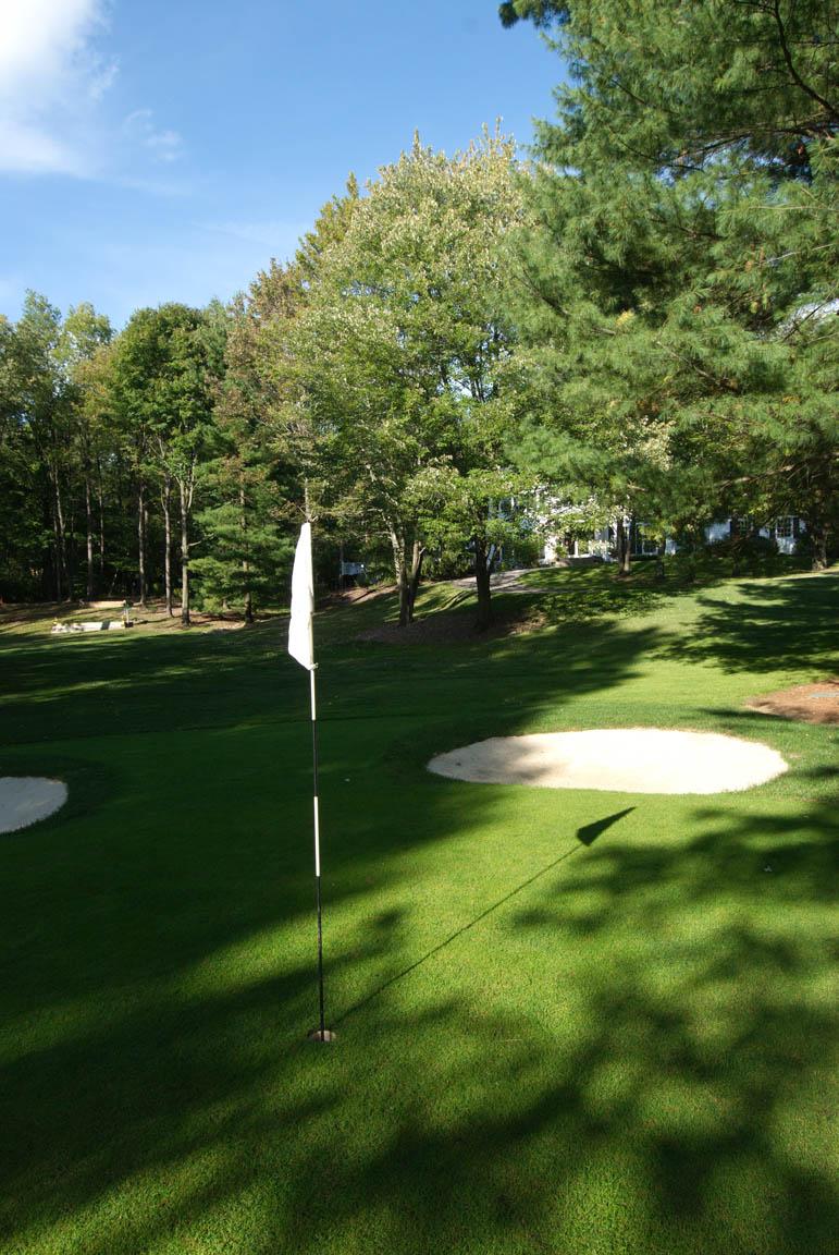 golfgreen4