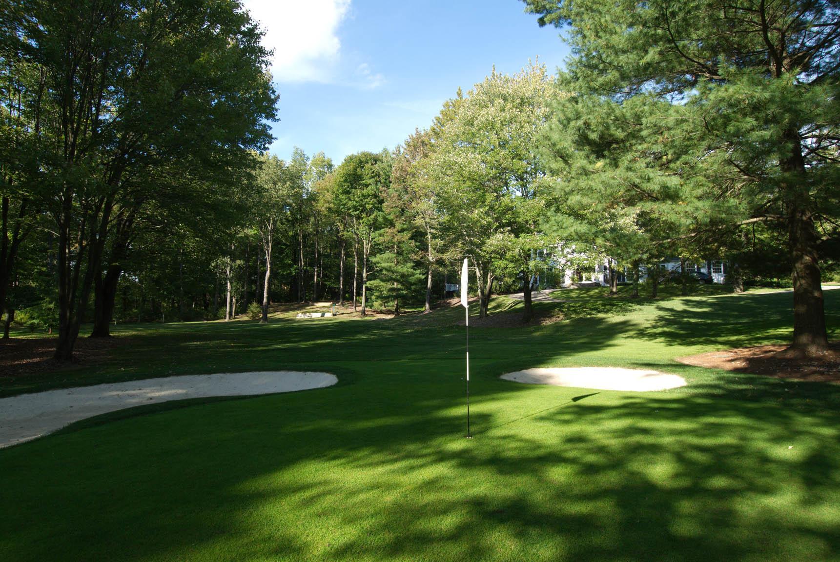 golfgreen6