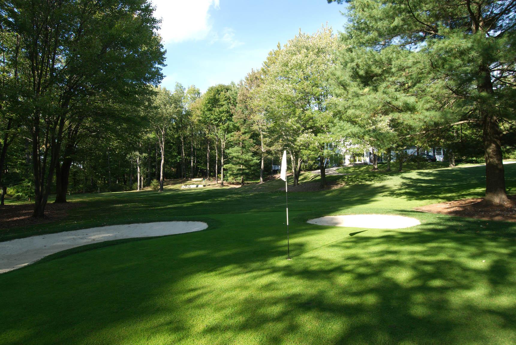 golfgreen8