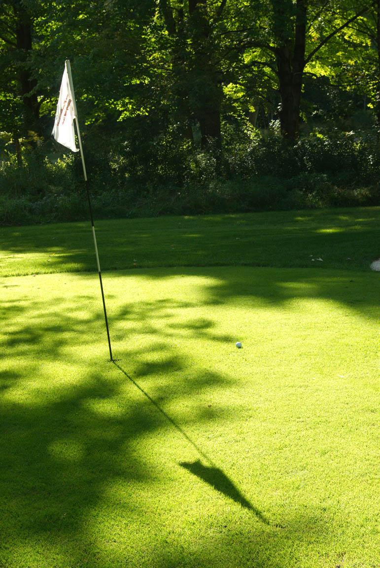 golfgreen9