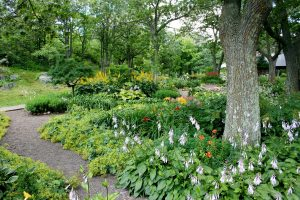 Keeping landscaping great during weather changes