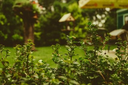 landscaping CRM software