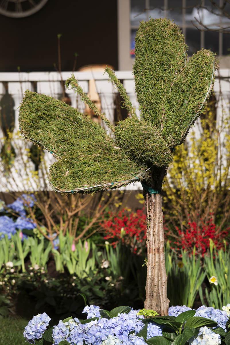 Butterfly bush feature