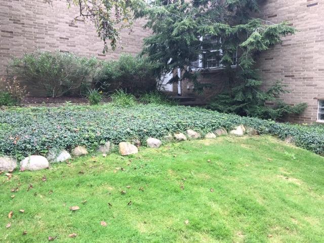 backyard-renovation-cleveland-5
