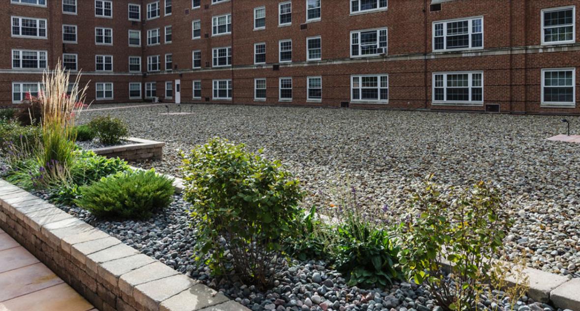 Commercial patio landscape