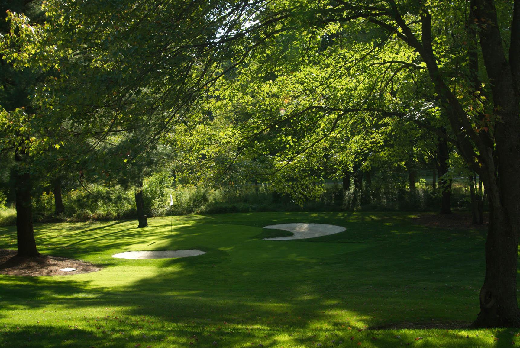 golfgreen1