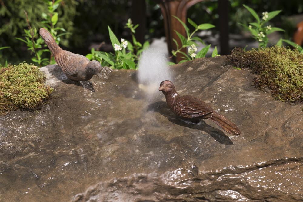 Birds water feature