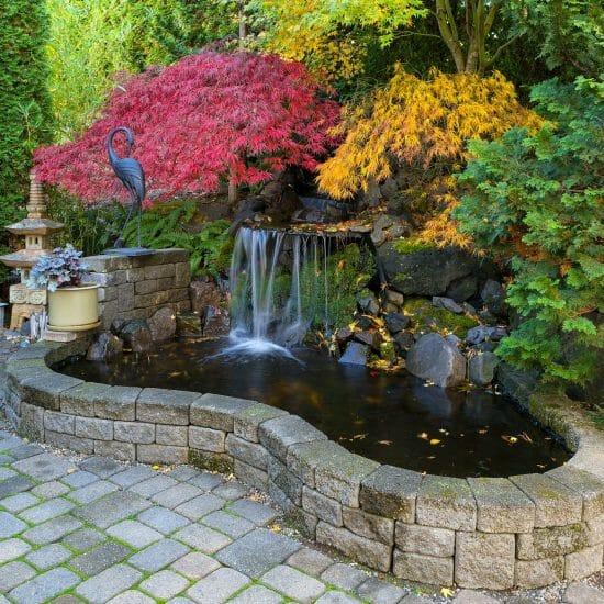 Koi pond with stone surround